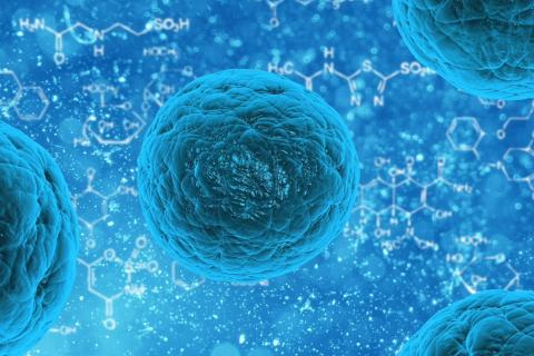 Corona Virus – Restiamo a Casa